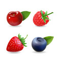 berry set forest realistic sweet fruit icon vector image