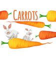 Fresh carrots and two rabbits vector image