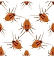 Seamless pattern cockroach on a white background vector image