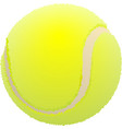 Tennis ball Ball for lawn tennis vector image