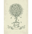Hand drawn vintage tree with vector image vector image