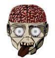 Zombie open brain vector image