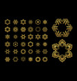 gold circular ornament on black background vector image