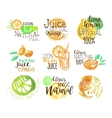 Natural Citrus Juice Promo Signs Colorful Set vector image