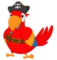 pirate parrot cartoon vector image