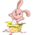 Sweet funny bunny vector image