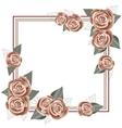 Rose frame for a postcard square form vector image