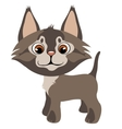 Sad homeless cute kitten pet isolated vector image