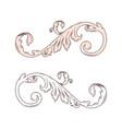 vintage baroque victorian frame border monogram vector image