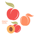Peach Set vector image