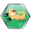 astrological sign scorpion vector image