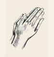praying vector image