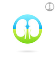 Kidney medical icon vector image
