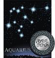 Aquarius zodiac sign Water bringer zodiac vector image