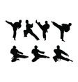 Karate set vector image