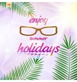 Summer sky with sun wearing sunglasses vector image