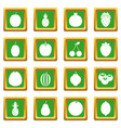 fruit icons set green vector image