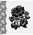 border lace vector image vector image