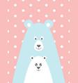 bear and the little bear vector image