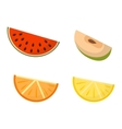 Fruit slices set vector image