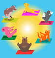 hand-painted yoga postures with cartoon vector image
