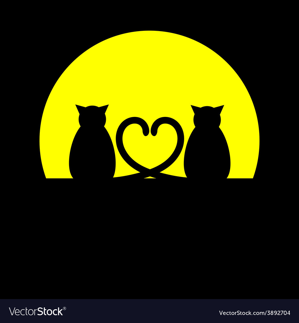 Cats silhouette vector