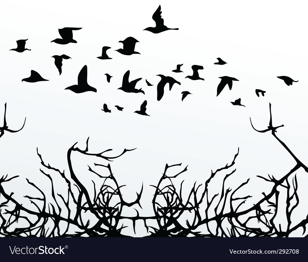 Birds over wood vector