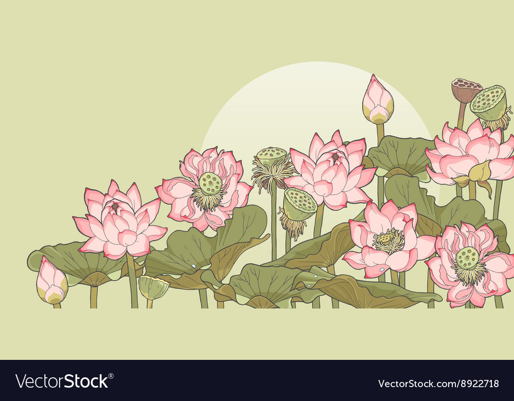 Thickets of lotus vector