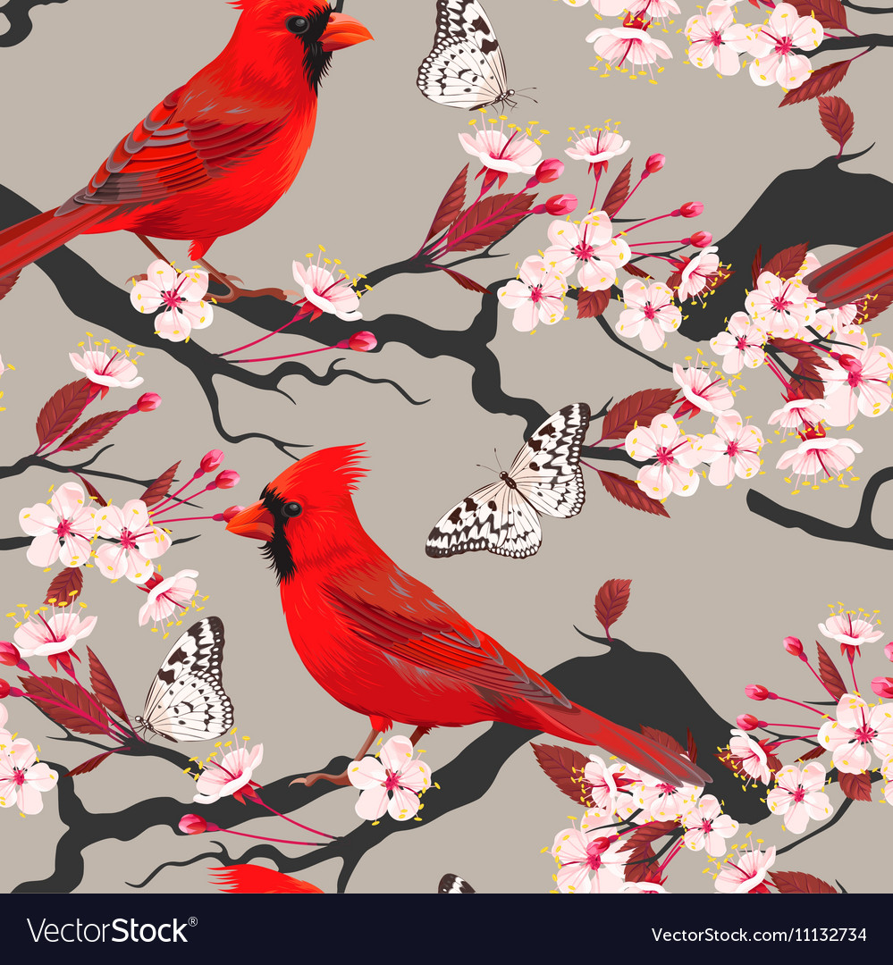Seamless cardinal and blooming cherry vector