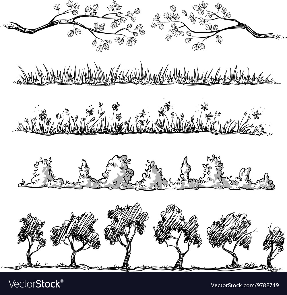 Set of nature hand drawn dividers vector