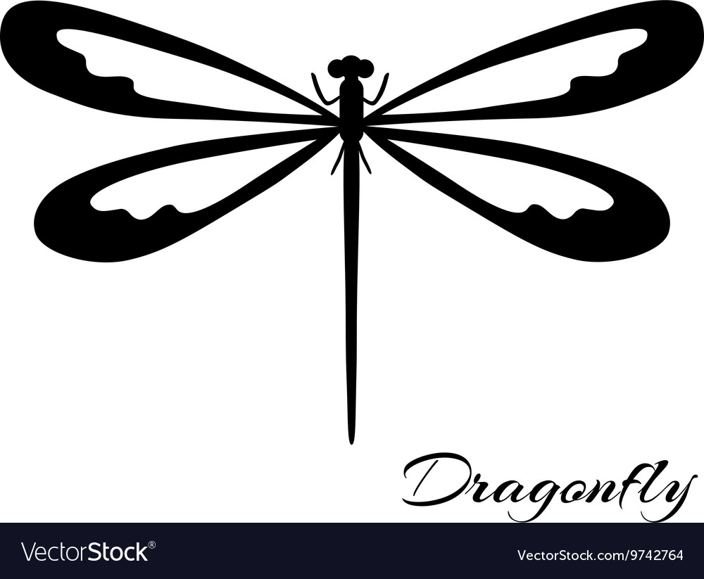 Black and white dragonfly vector
