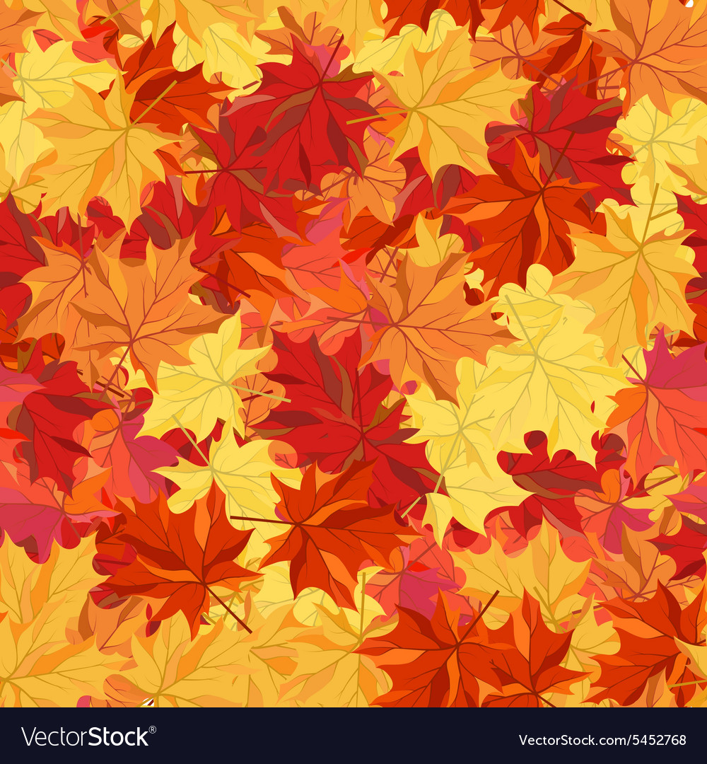 Maple fall vector