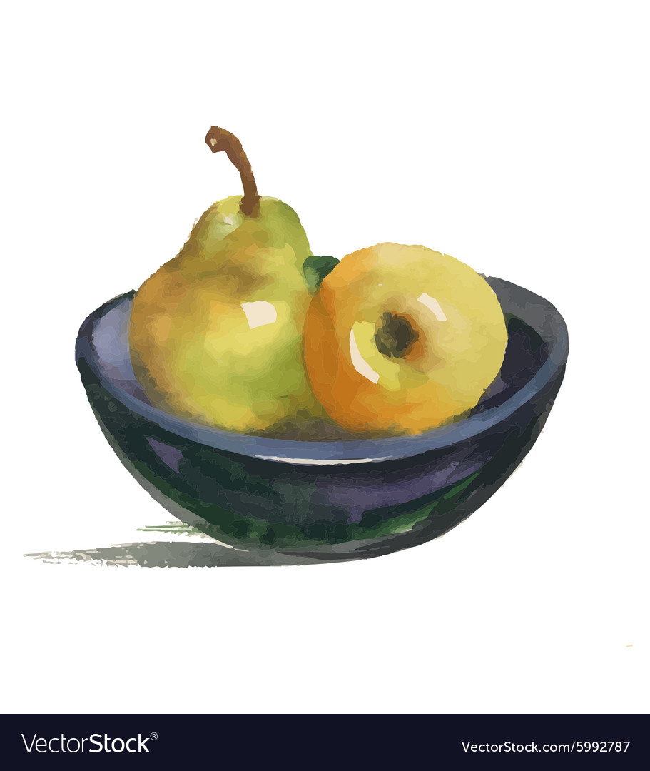 Watercolor still life with pear and apple on plate vector