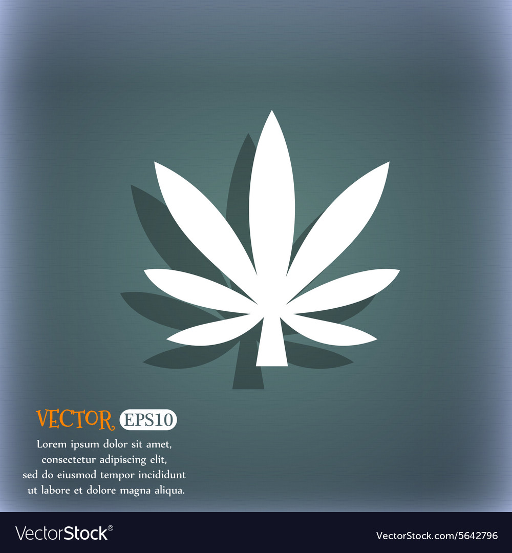 Cannabis leaf icon symbol on the bluegreen vector