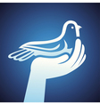 dove and human hands vector image vector image