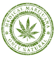 Medical Marijuana vector image