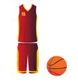 isolated basketball ball vector image