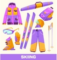 skiing elements clothes and tools vector image