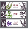 Organic Shop Banners With Herbs vector image