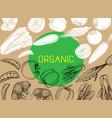 healthy organic eco vegetarian food logo design vector image