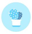 cactus icon domestic plant concept vector image