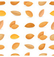 seamless texture with tasty almonds on white vector image