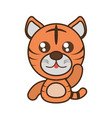 tiger baby animal kawaii design vector image