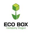Eco Box Design vector image
