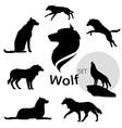 wolfSet vector image