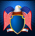 american eagle flag wing shield vector image
