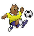 bear cartoon playing soccer vector image