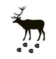 Black silhouette deer wild animal zoo vector image