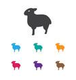 Of animal symbol on sheep icon vector image