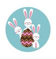 group bunnies egg chocolate vector image